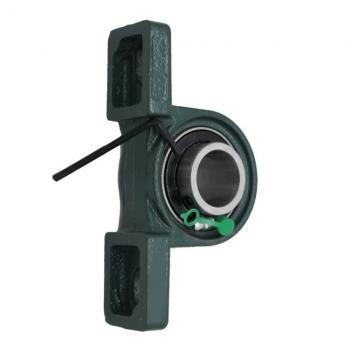 NSK Booster Pump Bearing 6009 Deep Groove Ball Bearing