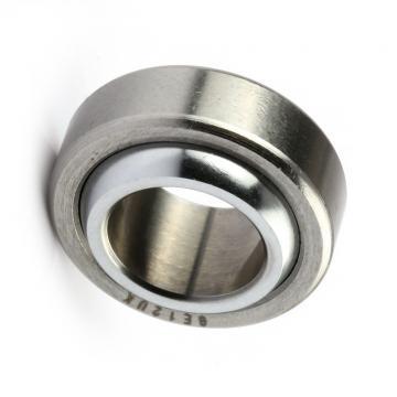 Deep Groove Ball Bearing 6200 6201 6202 SKF Bearing